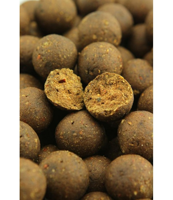 NORTHERN BAITS VABA HOT SPICY BOILIE 1KG