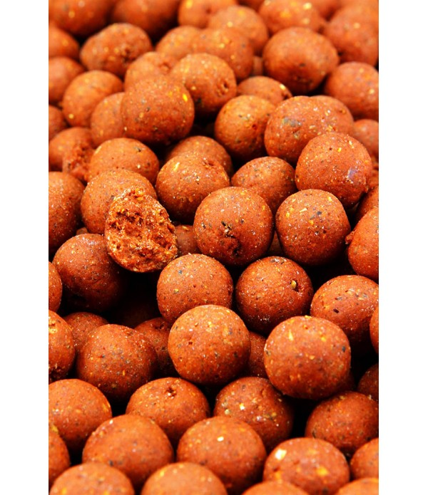 NORTHERN BAITS VABA EVOLUTION BOILIE 1KG